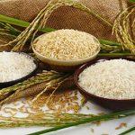 راههای تشخیص برنج ایرانی اصل