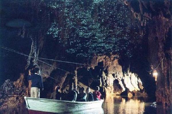 5fccccd1d9149 - خیره کننده ترین غار جهان، غار کرم های شب تاب وایتومو