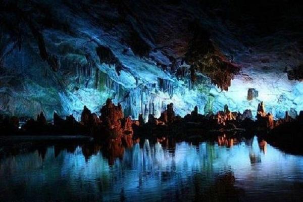 5fccccfb2d486 - خیره کننده ترین غار جهان، غار کرم های شب تاب وایتومو