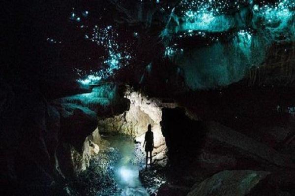 5fcccd30dbadc - خیره کننده ترین غار جهان، غار کرم های شب تاب وایتومو