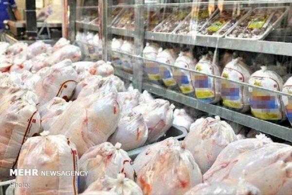 قیمت مرغ افزایش نخواهد داشت/ جوجه یک روزه ۴ هزار تومان