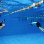 حضور در «فین سوییمینگ» قهرمانی جهان در برنامه تیم ملی غواصی