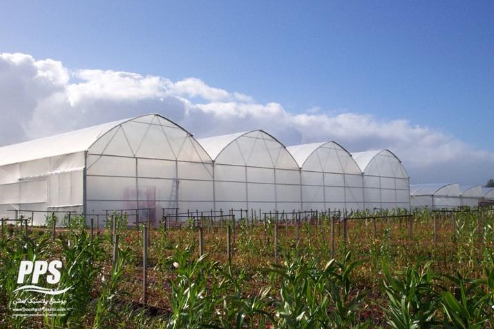 نایلون گلخانه - نایلون گلخانه ای پوشش پلاستیک