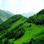 مردم تا اطلاع ثانوی از ورود به جنگلهای ارسباران خودداری کنند