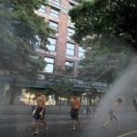 مرگ 233 نفر در کشور کانادا بر اثر گرمای شدید هوا!