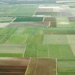 اجرای طرح کاداستر در سطح ۵۵ میلیون هکتار اراضی ملی و دولتی