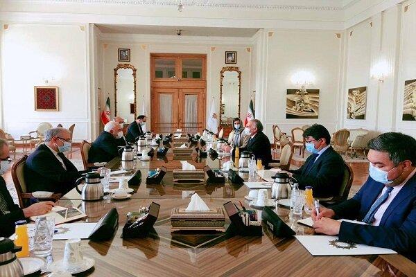 ظریف با نماینده دبیرکل سازمان ملل متحد در افغانستان دیدار کرد