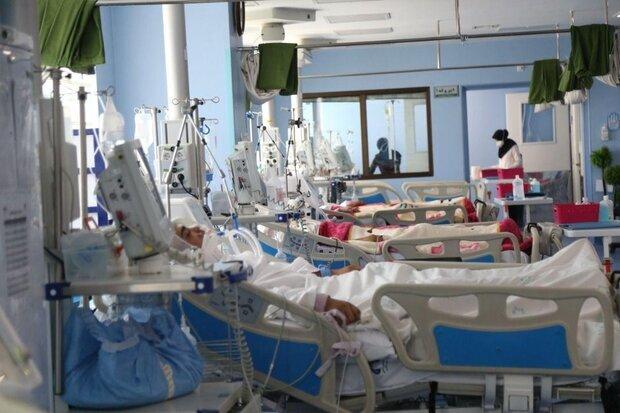 تعداد فوتیهای روزانه بیماران کرونایی در استان بوشهر به صفر رسید