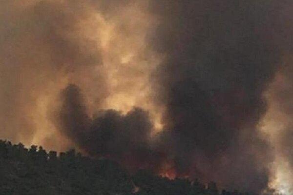 آتش سوزی گسترده در نزدیکی شهرکهای صهیونیست نشین در قدس اشغالی