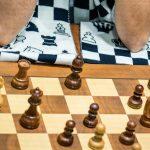 انتصاب سرمربیان تیمهای ملی شطرنج