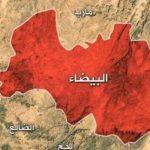 عملیات موفق نظامی نیروهای یمنی در استان البیضاء