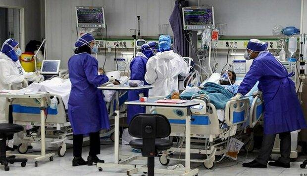 ۵۹۷ بیمار مبتلا به کرونا در مراکز درمانی زنجان بستری هستند
