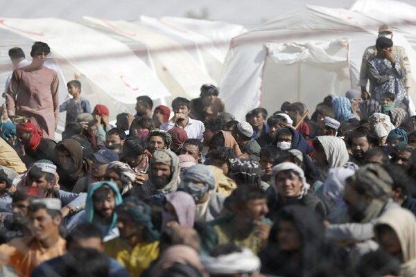 مقامات یونان از افزایش تدابیر حفاظتی در مرز با ترکیه خبر دادند